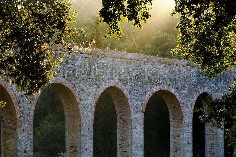 Colognole aqueduct, in the woods of the hills of Livorno