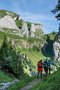 We departed north from Berggasthaus Bollenwees, briefly descended a trail under limestone cliffs shown here, before ascending west to Widderalp, Botzel pass and Meglisalp, in the Alpstein range, Appenzell Alps, Switzerland, Europe. A spectacular multi-day ridge walk covered in wildflower gardens starts at Hoher Kasten, reached via cable car from Brülisau, just 10 minutes bus ride from Appenzell village. Hike a scenic ridge via Staubern to beautiful Bollenwees. Appenzell Innerrhoden is Switzerland's most traditional and smallest-population canton (second smallest by area).