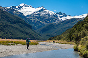Hiking under Mount Head and Grant Glacier along Rees River on Rees Station, on the Rees-Dart Track, Otago region, South Island of New Zealand. In 5 days, we tramped the strenuous Rees-Dart Track for 39 miles plus 12.5 miles side trip to spectacular Cascade Saddle, in Mount Aspiring National Park.