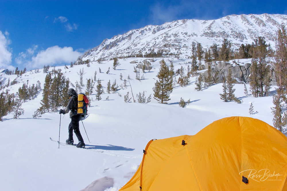 Skier and Yellow dome tent in a backcountry ski camp in Little Lakes Valley, Inyo National Forest, Sierra Nevada Mountains, California