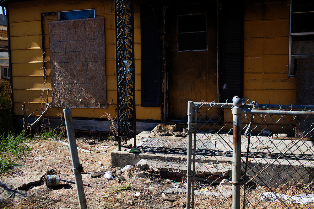 in the Baptist Town neighborhood of Greenwood, Mississippi on Saturday, November 6, 2010.