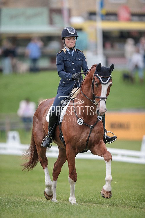 STACHUS 9 ridden by Pia Munker (Germany) at Bramham International Horse Trials 2016 at Bramham Park, Bramham, United Kingdom on 9 June 2016. Photo by Mark P Doherty.