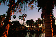 The Estuary at Sunrise, San Jose, Baja California, Mexico<br />