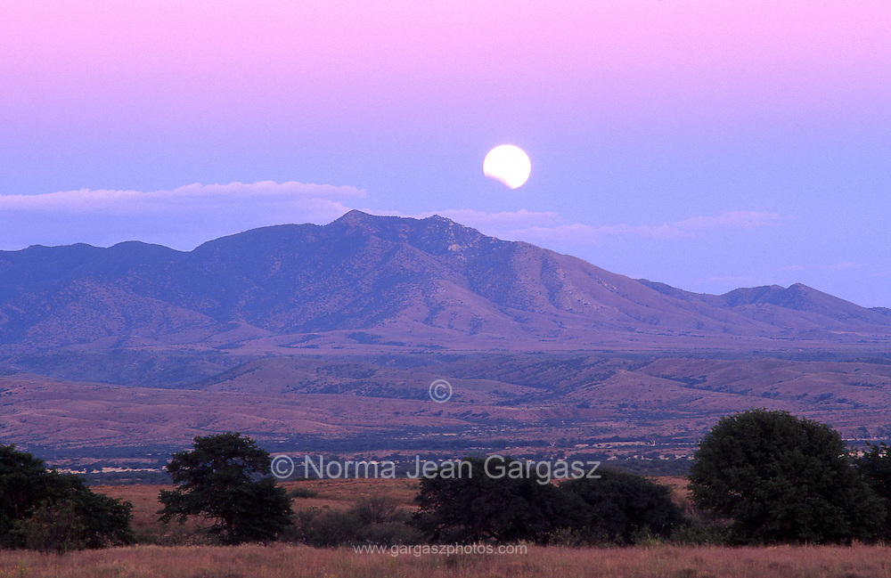 A lunar eclipse graces the sky over the Empire-Cienega Conservation Area in the foreground and Whetstone Mountains in the background in the Sonoran Desert, near Sonoita, Arizona.