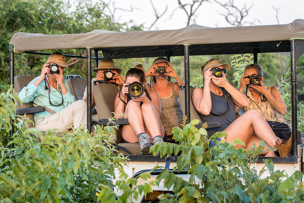 A group of tourists in a safari caravan all hold up their cameras to snap photos of the wildlife. Chobe National Park - Botswana