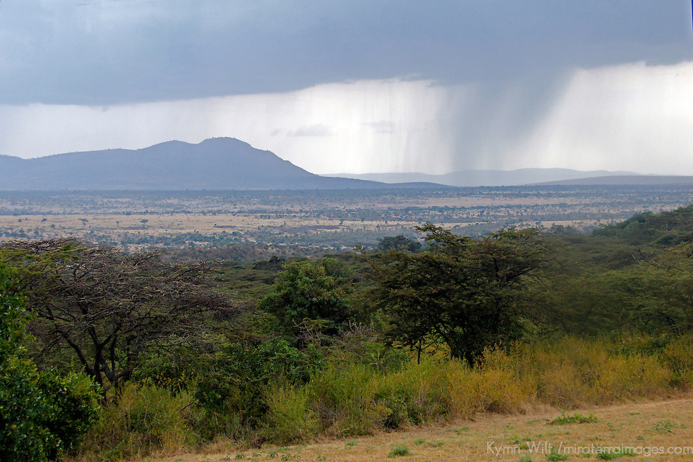 Africa, Kenya, Masai Mara. Rains sweep across the plains of the Maasai Mara and Serengeti border region.