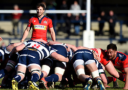 Bristol Rugby Scrum-Half Martin Roberts  - Mandatory byline: Joe Meredith/JMP - 28/02/2016 - RUGBY - Headingley Stadium -Leeds,England - Yorkshire Carnegie v Bristol Rugby - Greene King IPA Championship