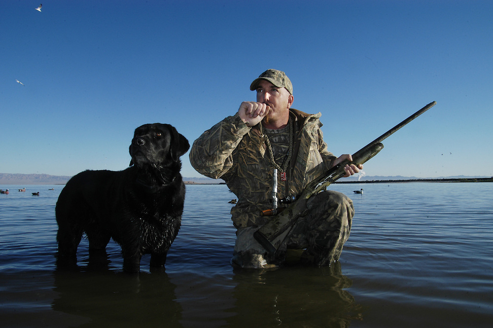 A waterfowl hunter call at a pair of ducks.