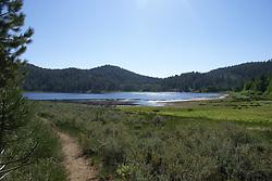 Spooner Lake - Aquatic and Terrestrial Environments