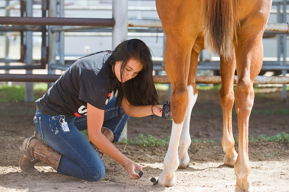090512       Brian Leddy.Lacey Becenti paints her horse's hooves before the Junior Horse Show Wednesday at the Navajo Nation Fair. The show was one of the first events to kick off the 4H portion of the fair.