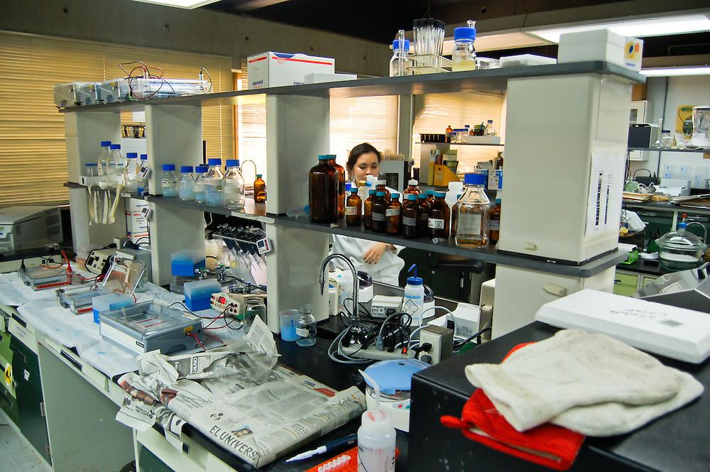 IDEA <br /> Esta instituci&oacute;n p&uacute;blica al servicio de la sociedad renaci&oacute; en 1999 con la llegada del Gobierno Bolivariano de Hugo Chavez. Hoy en d&iacute;a llevan a cabo 49 proyectos cient&iacute;ficos en donde los conocimientos de 120 investigadores se fusionan para as&iacute; desarrollar tecnolog&iacute;a, productos y servicios<br /> Hoyo de La Puerta, Sarteneja - Venezuela 2007<br /> (Copyright &copy; Aaron Sosa)