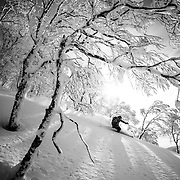 Jake Cohn, Rusutsu, Japan. NOTE: Similar photo held by other magazine. Confirm usage before publication.