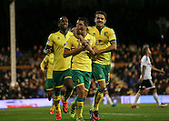 Fulham v Norwich City 18/10/2016