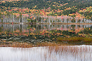 Fall foliage colors reflect in Upper Hadlock Pond, in Acadia National Park, on Mount Desert Island, near Bar Harbor, Maine, USA. Hike granite peaks and enjoy Atlantic coastal scenery. Originally created as Lafayette National Park in 1919, the oldest National Park east of the Mississippi River, it was renamed Acadia in 1929. During the last glacial maximum 21,000 years ago, glaciers measuring up to 9,000 feet thick cut into granite ridges, sculpting the fjord-like Somes Sound.