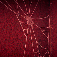 Spider web with frost in winter against farming equipment in red