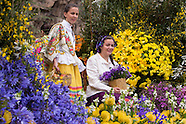 Festa da Flor 2014