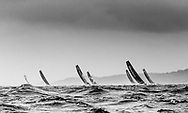 The Seven Star Triple Crown as part of Lendy Cowes week 2017. The Volvo Ocean Race VOR65's led by 'Mapfre' race westward up the Solent<br /> Credit Lloyd Images
