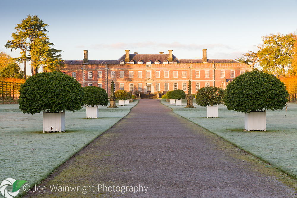 The house at Erddig Hall, from a garden path lined with Prunus lusitanica in white planters - photographed on a frosty November morning