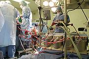 JAN 2005 MILAN : CENTRO CARDIOLOGICO MONZINO; SALA OPERATORIA. PERFUSINISTA AL LAVORO SULLA MACCHINA PER LA CIRCOLAZIONE EXTRACORPOREA ( CEC). © CARLO CERCHIOLI..CENTRO CARDIOLOGICO MONZINO ( MONZINO CARDIOLOGICAL HOSPITAL); OPERATING THEATRE. MACHINE FOR EXTRACORPOREAL CIRCULATION OF THE BLOOD.