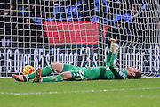 Brentford goalkeeper David Button lies distraught after Bolton Wanderers midfielder Neil Danns  goal during the Sky Bet Championship match between Bolton Wanderers and Brentford at the Macron Stadium, Bolton, England on 30 November 2015. Photo by Simon Davies.