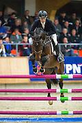 Dennis van den Brink - Gringo<br /> KWPN Hengstencompetitie 2016<br /> © DigiShots