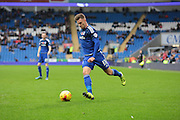 Cardiff City midfielder Anthony Pilkington during the Sky Bet Championship match between Cardiff City and Reading at the Cardiff City Stadium, Cardiff, Wales on 7 November 2015. Photo by Jemma Phillips.