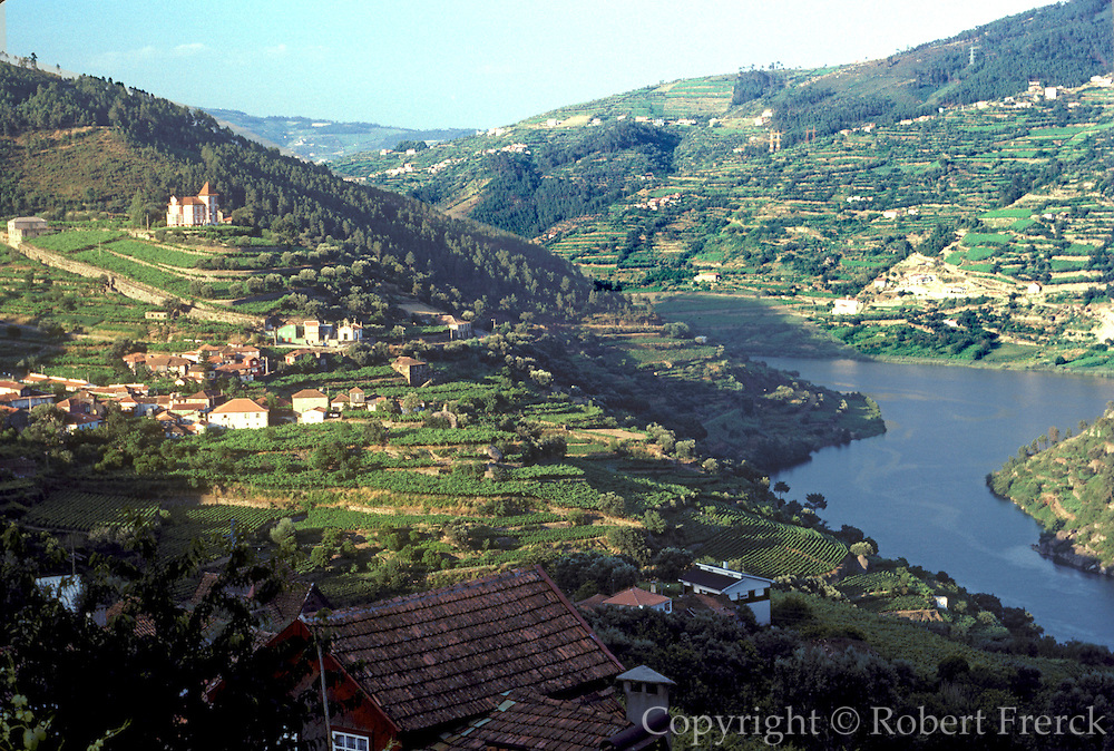 PORTUGAL, NORTH, AGRICULTURE Upper Douro River Valley, Port Wine vineyards near Regua