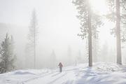 WA14475-00...WASHINGTON - Vicky Spring cross-countyr skiing near Loop Loop Summit in the North Cascades. (MR# S1)