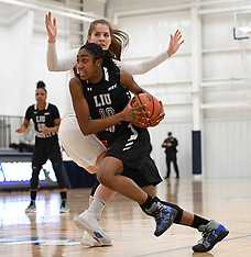 2018-03-07 St. Francis New York vs. LIU Brooklyn NEC Women's Basketball Quarterfinals