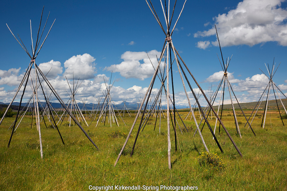 MT00084-00...MONTANA - Ghost teepees, poles standing to mark the location of where people were sleeping the night of the slaughter at the Big Hole National Battlefield.