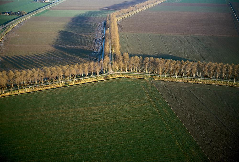 Nederland, Zeeland, Noord-Beveland, Oostpolder, 15/11/2001; lokale wegen (voormalige) polderdijken, met populieren omzoomd; geploegde akkers, weiden, structuur vh landschap, platteland, verkaveling, ruilverkaveling, inpoldering<br /> luchtfoto (toeslag), aerial photo (additional fee)<br /> photo/foto Siebe Swart