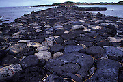 Koloko-Honaunau, Lava rock seawall, Kona, Island of Hawaii<br />