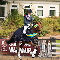 Preliminary - 2014 British Dressage National Championships