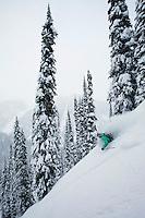 Heliskiiing, Galena, Powder, CMH, Canadian Mountain Holidays, Tobbe,