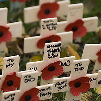 White cross and red poppies on Remembrance day<br />