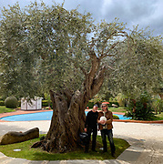 Near Tortoli, Jarad & me with one of the oldest olive trees any of us has ever seen