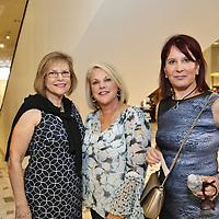 Linda Dahl, Linda Kline, Shelly Paull
