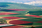 Aerial photography. Elevated view of agricultural fields in Jezreel Valley, Israel