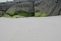 Inis Oirr beach the Aran Islands Galway Ireland