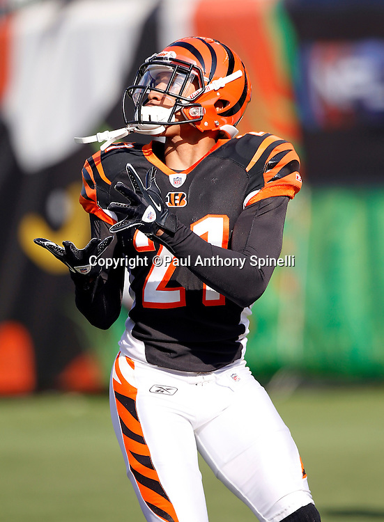 Cincinnati Bengals cornerback Brandon Ghee (21) catches a pass during pregame warmups at the NFL week 8 football game against the Miami Dolphins on Sunday, October 31, 2010 in Cincinnati, Ohio. The Dolphins won the game 22-14. (©Paul Anthony Spinelli)