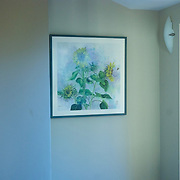 "Sunflower Painting in its new home, framed 31"" x 31"""