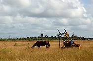 Horse and cart, Gaspar, Ciego de Avila, Cuba.