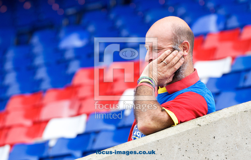 A fan of Crystal Palace waits for the game to start during the Barclays Premier League match at Selhurst Park, London<br /> Picture by Alan Stanford/Focus Images Ltd +44 7915 056117<br /> 18/10/2014