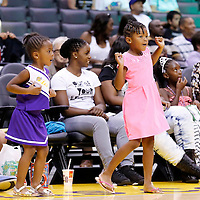 22 June 2014: Fans are seen during the San Antonio Stars 72-69 victory over the Los Angeles Sparks, at the Staples Center, Los Angeles, California, USA.