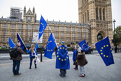 © Licensed to London News Pictures. 14/11/2017. London, UK. Anti-Brexit protesters demonstrate outside Parliament as MPs debate the European Union (Withdrawal) Bill. Photo credit: Rob Pinney/LNP