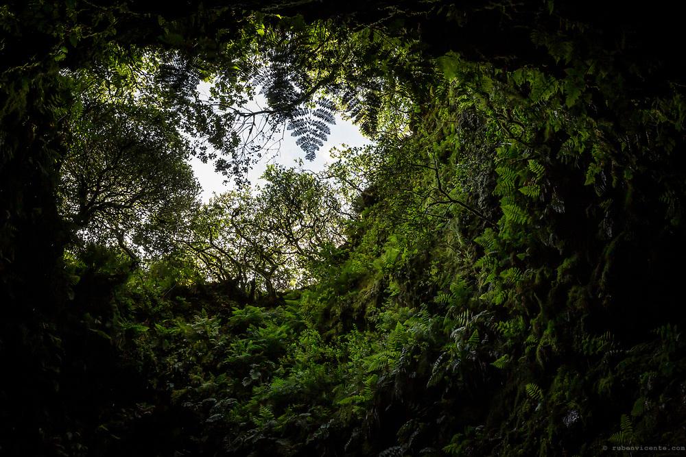 Algar do Carvão volcanic chimney entrance. Terceira, Azores, Portugal