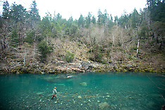 Chetco River, Oregon Photos - Steelhead Flyfishing Photography