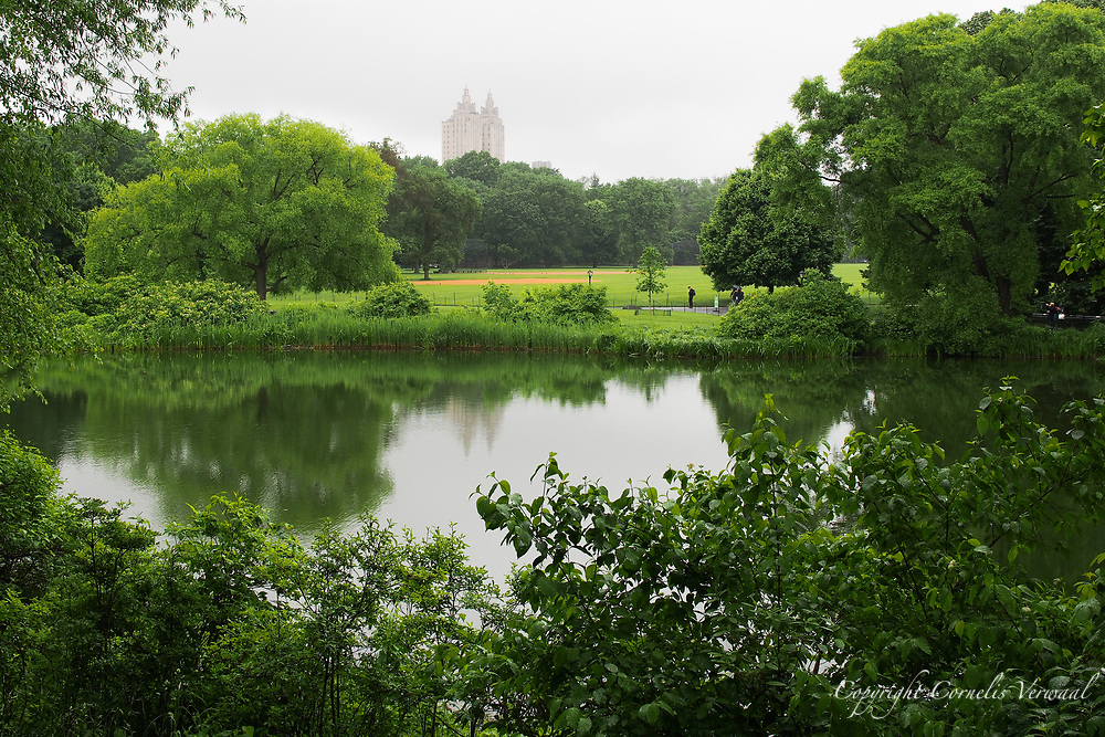 Turtle Pond in Central Park with a view of the Great Lawn and the towers of the El Dorado.