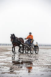 Beach training met Christiaan Provoost (NED) <br /> Strand Domburg 2014<br /> © Dirk Caremans