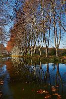 France, Languedoc-Roussillon, Aude (11), Canal du Midi classé Patrimoine Mondial de l'UNESCO, rangé de platane // France, Languedoc-Roussillon, Aude (11), Canal du Midi, tree lined canal